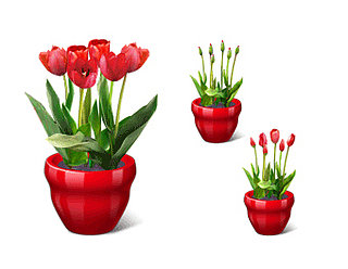 Geek Tip: Give the Gift of Virtual Flowers on Valentine's Day
