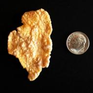 Illinois-Shaped Cornflake Sells for $1,350
