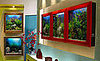 AquaVista 500 Fish Tank Frames Your Fish