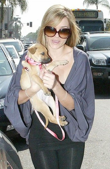 New Puppy Alert! Lauren Conrad
