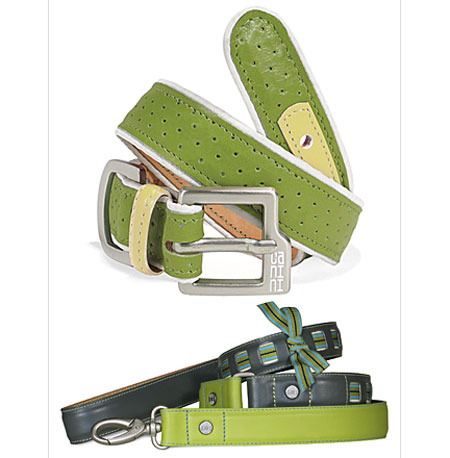 Online Sale Alert! Canini's Anything Green Sale