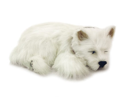 Perfect Petzzz: West Highland Terrier