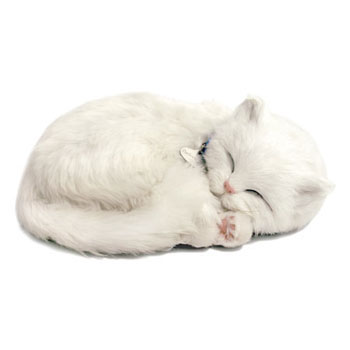 Perfect Petzzz: White Shorthair Cat