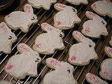 Buttermilk Sugar Cookies - Happy Easter bunnies!