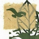 Leaf (original linocut with chine cole)