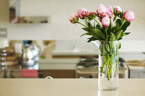 Casa Quickie: Give New Life to an Empty Vase