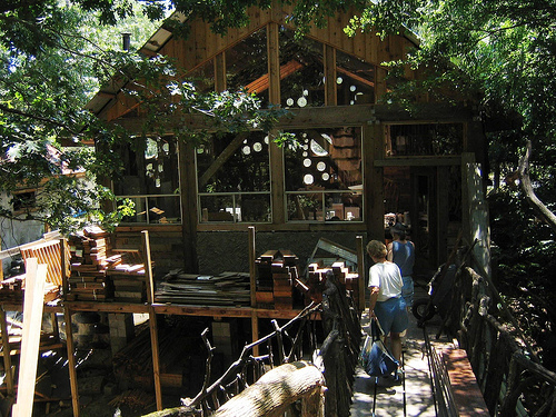 A bridge takes visitors to the treehouse.