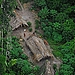 Uncontacted tribe photographed near Brazil-Peru border