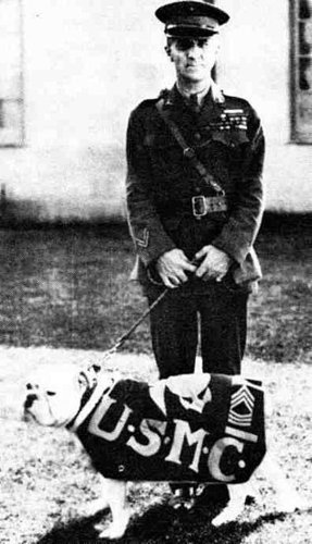 Sgt. Maj. JIGGS: First unofficially Official Mascot of the Marine Corps