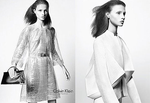 Calvin Klein Collection Spring 2009 Ad Campaign