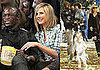 Photos of Heidi Klum, Seal, Johan Samuel, Leni Klum, Henry Samuel at Park in LA