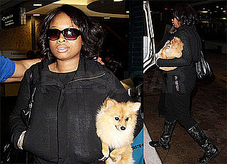 Photos of Jennifer Hudson with Her Dog in Tampa for Super Bowl