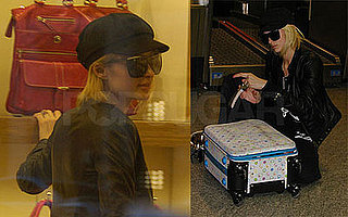 Paris Hilton Tries To Buy A Cheetah