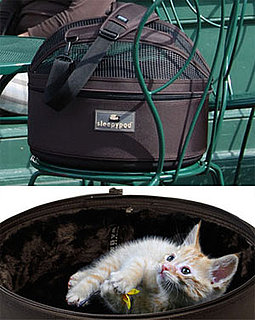 Sugar Shout Out: Win A Kitty Carrier!