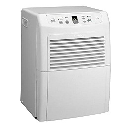 Got Allergies? Get a Dehumidifier