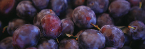 Plums Plump Up Iron