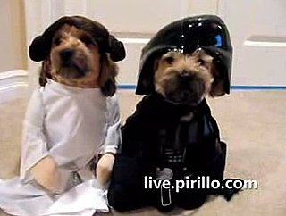 Dogs Dressed Up as Star Wars Characters