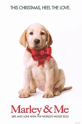 Know What's Still Adorable? The Puppy in Marley & Me