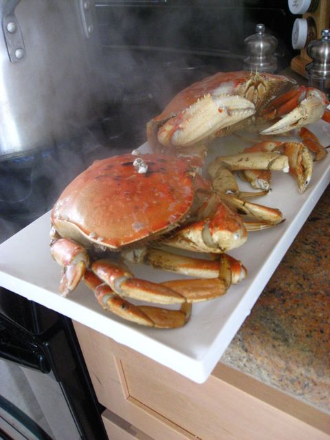 When the crabs are done, remove them from the pot and immerse them for a few seconds in cold water. You want to do this so that they stop cooking, and will not be overdone.
