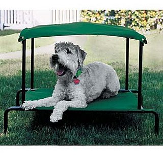 The Breezy Bed Keeps Pets off the Ground