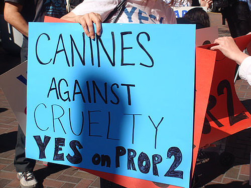 Dogs Bark Yes on Prop 2 in California