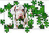 Puppy Jigsaw Puzzle from National Geographic