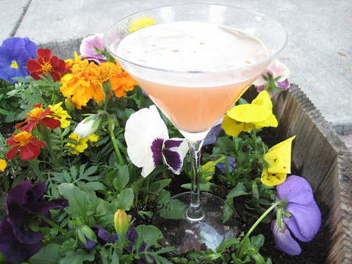 The Official Tartini Recipe From Sex and the City