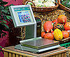 The Future of the Grocery-Store Checkout Is Here