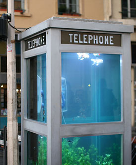 Aquarium Phone Booth From the Lyon Light Festival in France