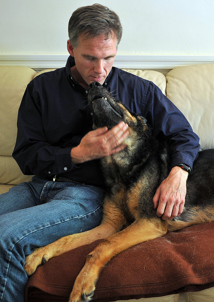 The Soon-to-be Cloned Trakr, the German Shepherd Hero