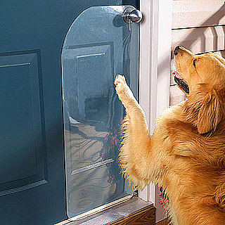 Scratch Protector Saves Doors From Dogs' Claws