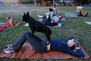 Do Tell: What's Your Favorite Workout With Furry Friends?