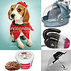Pet's November Must Haves