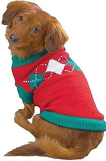 Does Your Dog Have an Ugly Sweater?