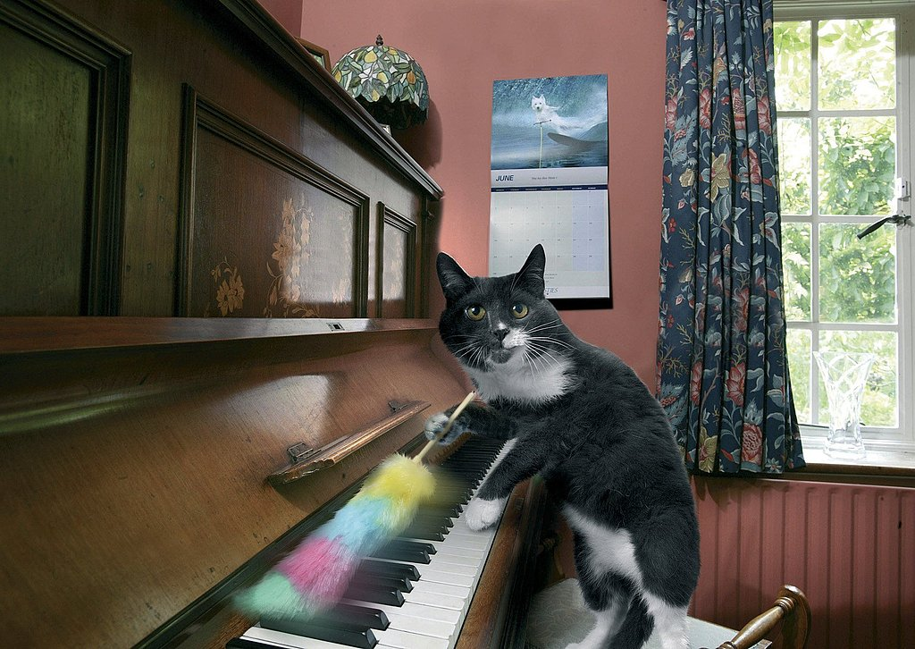 Tickling the ivories . . .