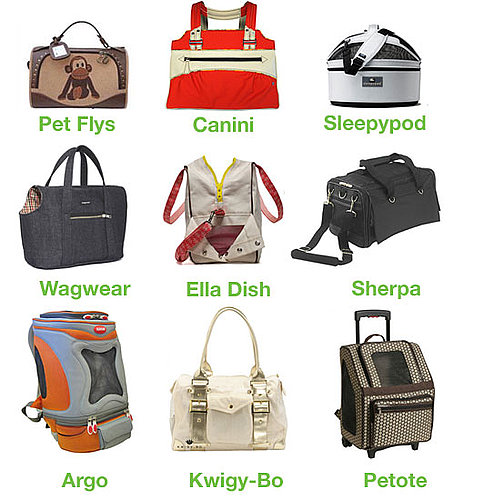 Which Pet Carrier Collection Is the Most Chic?