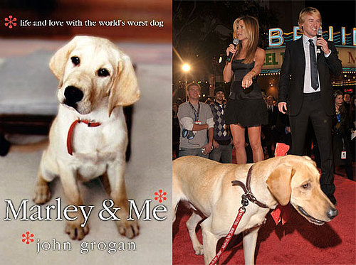 Did You Read Marley & Me?