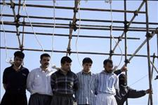 Iran Hangs 29 People