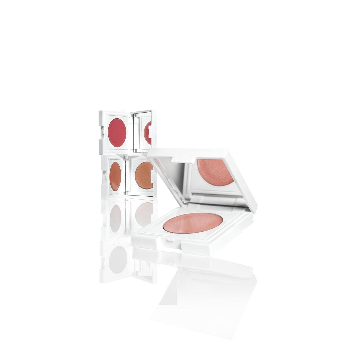 NP Set Lip Gloss Compact ($12).