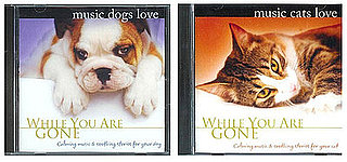 Pampered Pals: Music Cats and Dogs Love