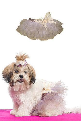 Butterfly tutu { by Aubrey O&#039;Day }