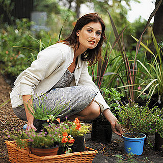 How-To: Picking Your Outdoor Planters