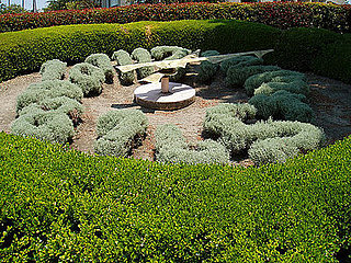 Cool Idea:  Topiary Clock