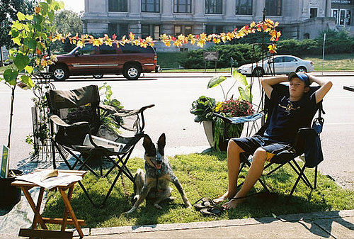 Cool Idea: Park(ing) Day Is Dog-Friendly