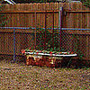 Before and After: From Backyard Planter to Bathroom Centerpiece