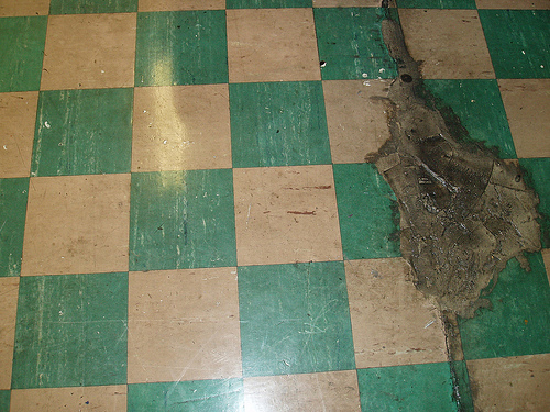 I love these vintage floors, but they've definitely seen better days. Want to know who might replace them? Keep clicking!