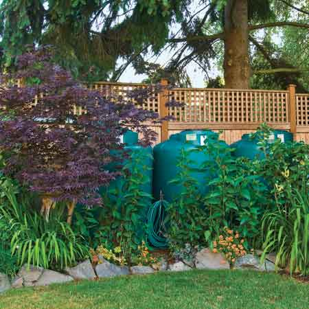 Rain barrels cluster behind foliage, and blend into the natural landscape.
