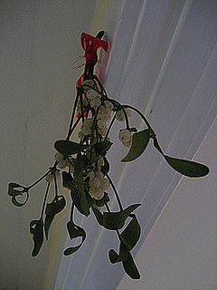 Do You Hang Mistletoe?