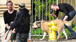 Photos of Ryan Gosling Filming His Dog and Talking to Vietnam Vet in LA