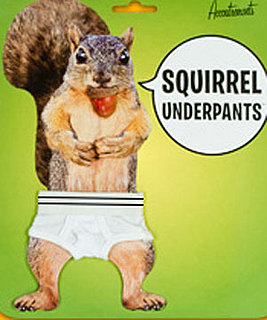 Product of the Day: Squirrel Underpants